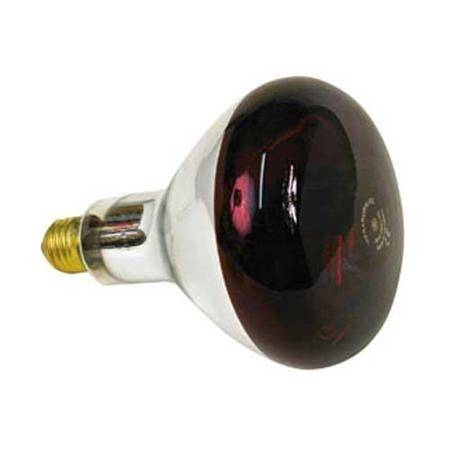 Ampoule Pour Lampe Infrarouge Difac
