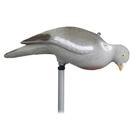 Appelant Stepland Pigeon Picoreur Sans Patte - Par 12