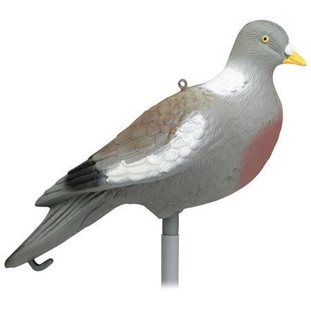 Appelant Stepland Pigeon Sans Patte - Par 12