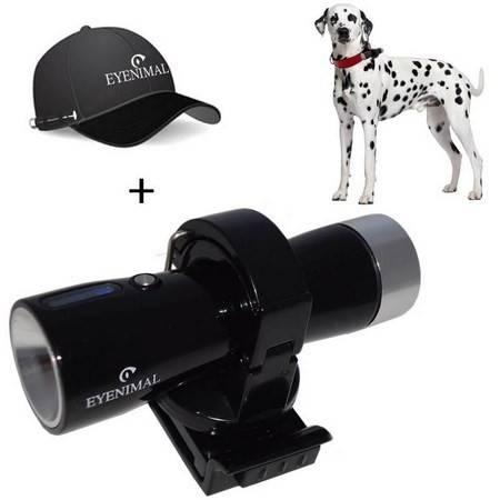 Camera Numerique Chien Eyenimal Dog Videocam
