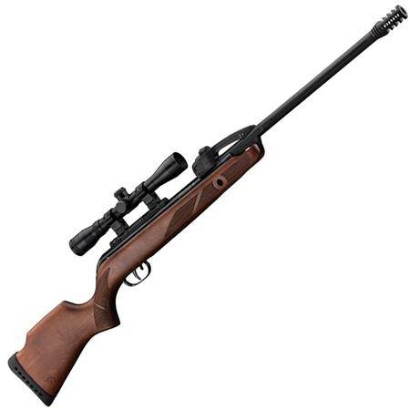 Carabine A Plomb Gamo Fast Shot 10X Igt