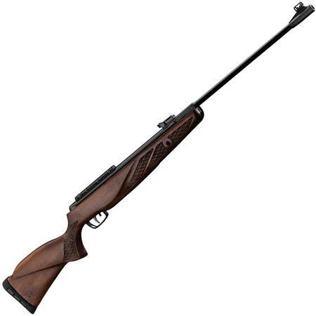 Carabine A Plomb Gamo Grizzly 1250