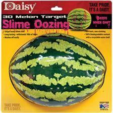 Cible daisy melon 3d