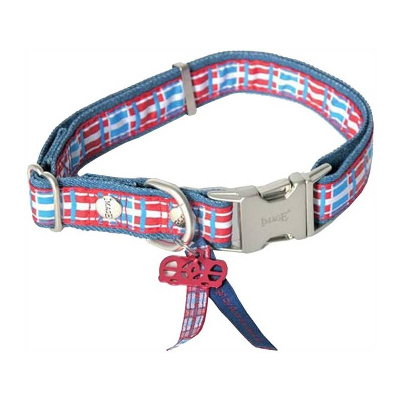 Collier Chien Reglable Image Dog Save The Queen
