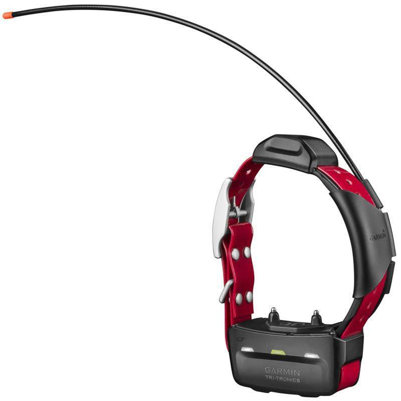 Collier Garmin Supplementaire De Reperage Et Dressage Tt15