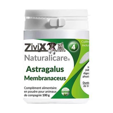 Complément Alimentaire Zivix Astragalus Membranaceus