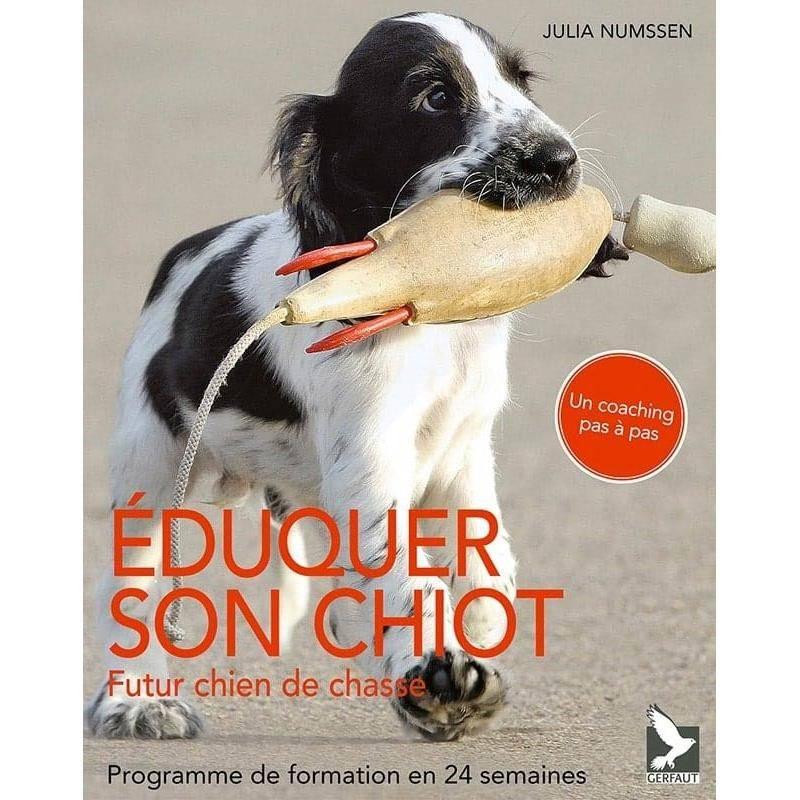 Éduquer Son Chiot, Futur Chien De Chasse, Programme De Formation En 24 Semaines