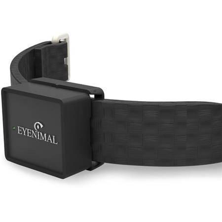 GPS EYENIMAL IOPP TRACKER