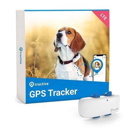 Gps Tractive Tractive Gps Dog 4