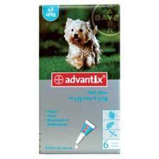 """Pipette insecticide bayer advantix 100"""" petit chien 2-10kg"""