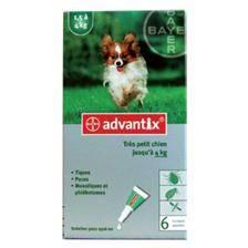 """Pipette insecticide bayer advantix 40"""" tres petit chien 1-2kg"""
