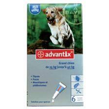"""Pipette insecticide bayer advantix 400"""" grand chien"""