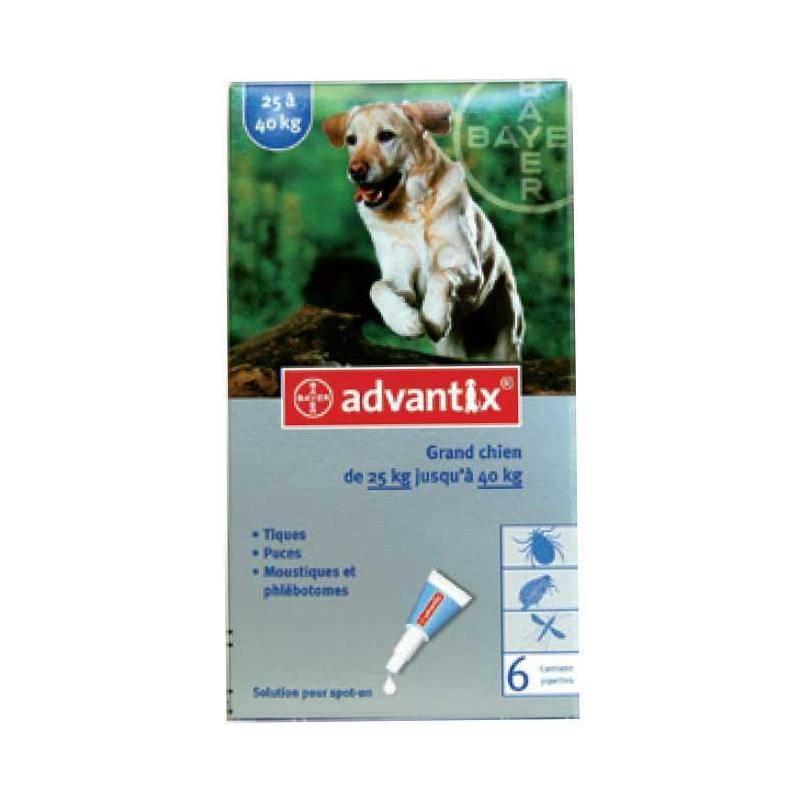 Pipette Insecticide Bayer Advantix 400 Grand Chien